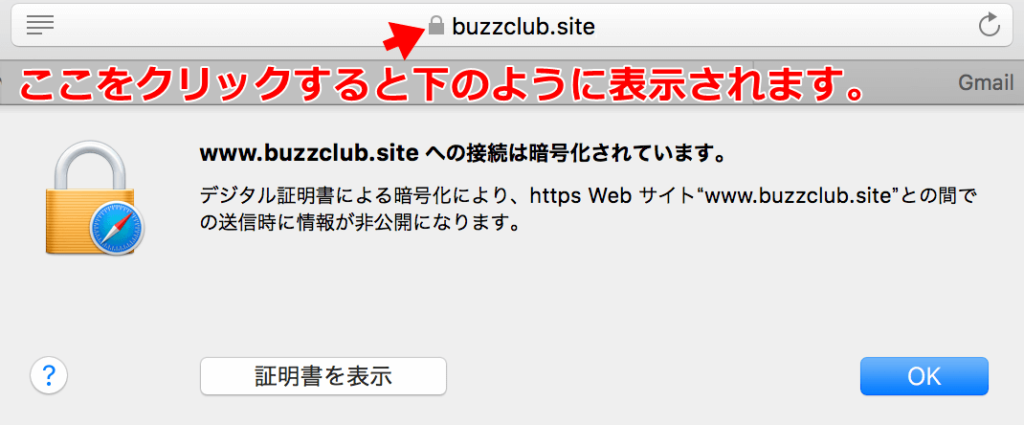 safari-ssl